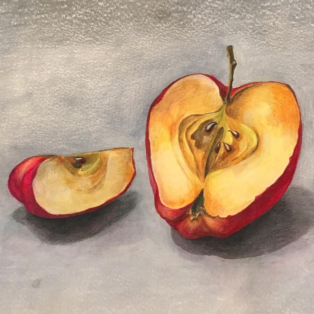 Rotting Apples. 2018. Watercolor and colored pencils on paper.