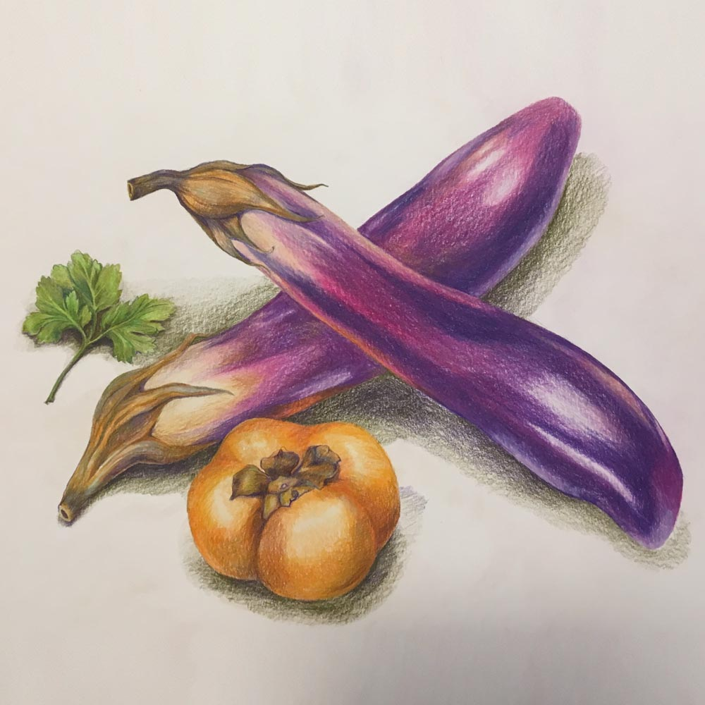 Composition with Two Eggplants and a Persimmon. 2019. Colored pencils on paper.