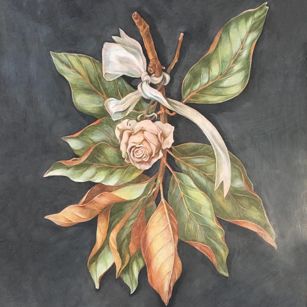 Magnolia Branch and a Rose. 2019. Colored pencils on paper.
